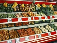 פירות ירקות שוק  / צלם: פוטוס טו גו